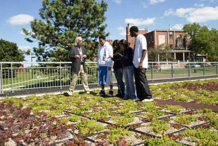 students on green roof architecture